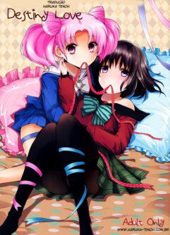 Sailor Moon: O amor secreto da pequena Chibiusa